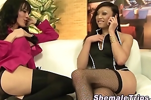 Shemale cums over tranny