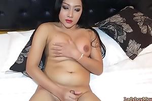Chubby Ladyboy Cake Strokes Her Dick